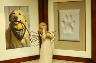 Paw print and pet dog picture frame